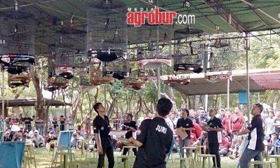 Babeh Cucun Cup 1 Jakarta