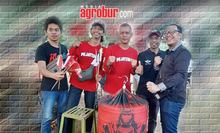 Murai Batu Satria Koleksi Robby Doda Jakarta