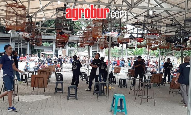 Anniversary Chacha Jakarta BnR Jakarta