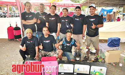 Batu Lovebird Community