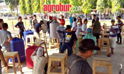 Latber Sabtu Ceria PG Jatiroto Lumajang