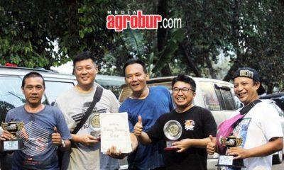 Anis Kembang Speed Iblis Koleksi Mr.One-D Bandung