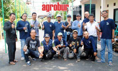 Latber Perkutut KKMB Bekasi