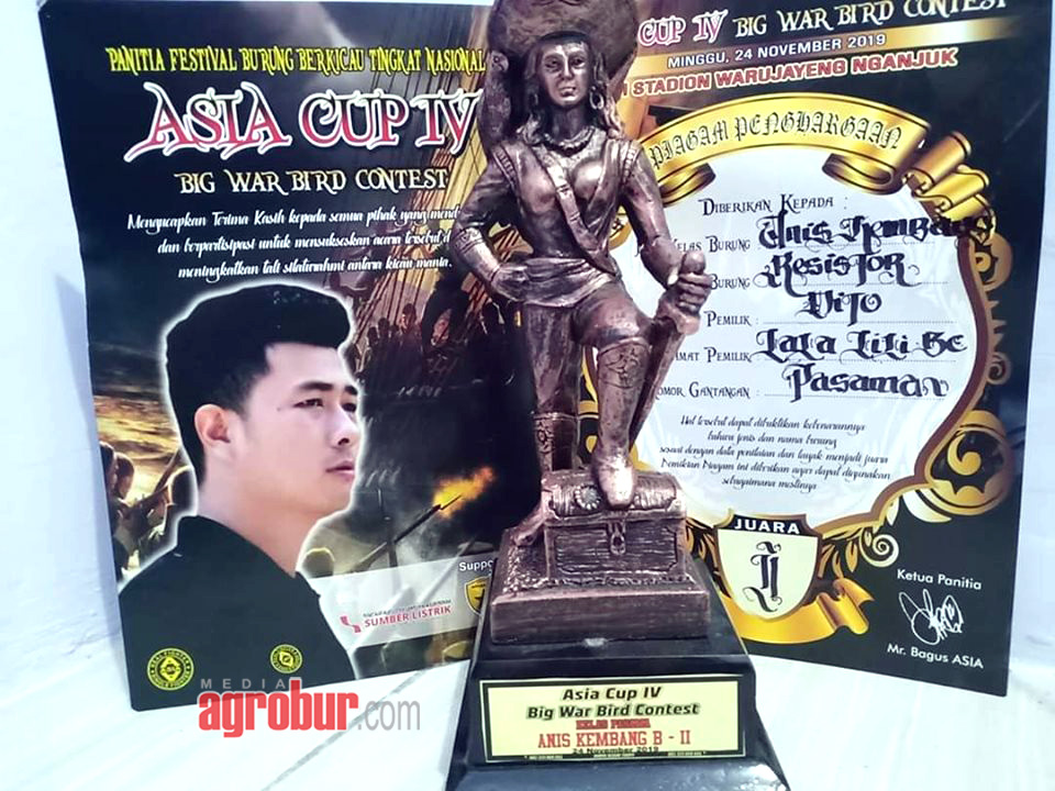 Anis Kembang Resistor Koleksi Dito Surabaya