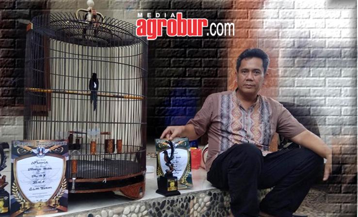 Edo CLM depok