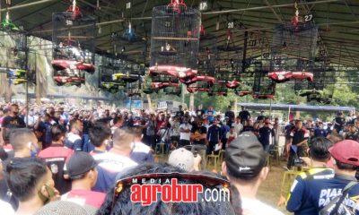 Radja Cup Cibubur