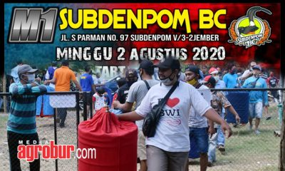 Laga M1 Subdenpom BC Jember
