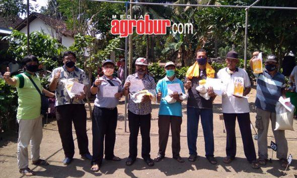 Latber Perkutut Sari Murni Cup Banyuwangi