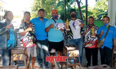 media agrobur surabaya gantangan king sbc surabaya