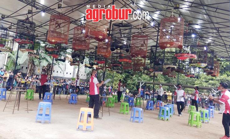 Piala Cileungsi Bogor