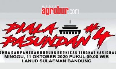 Jelang Piala Pasundan 4 Bandung