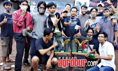 Wahana Bird Contest Jakarta
