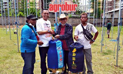 H Muhammad Situbondo Boyong 2 Juara