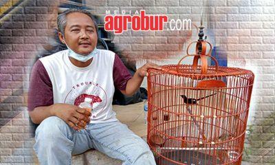 Asep Perawat Tunanetra Tangerang