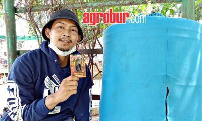 Murai Batu Hacker Widan Jakarta