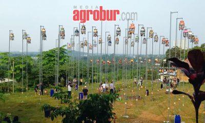 Halal Bihalal Kungmania Bogor