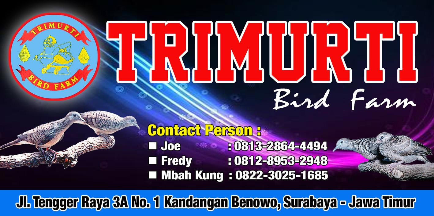 Iklan Trimurti BF Surabaya