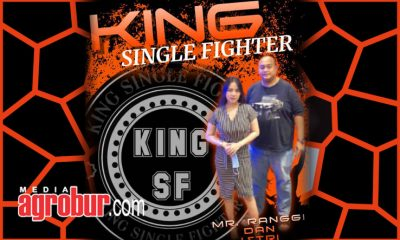 Mr Ranggi King SF Depok