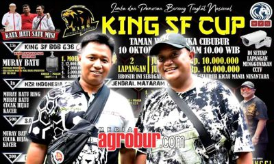 Jelang King SF Cup Cibubur